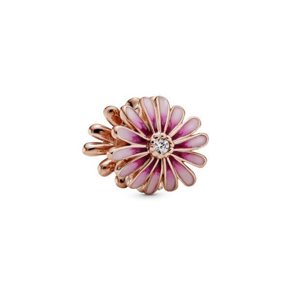 Element Rosafarbenes Gänseblümchen