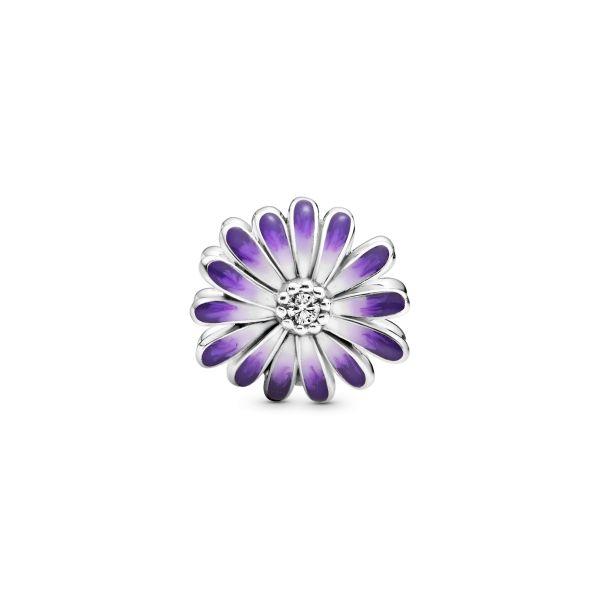 Element Lilafarbenes Gänseblümchen